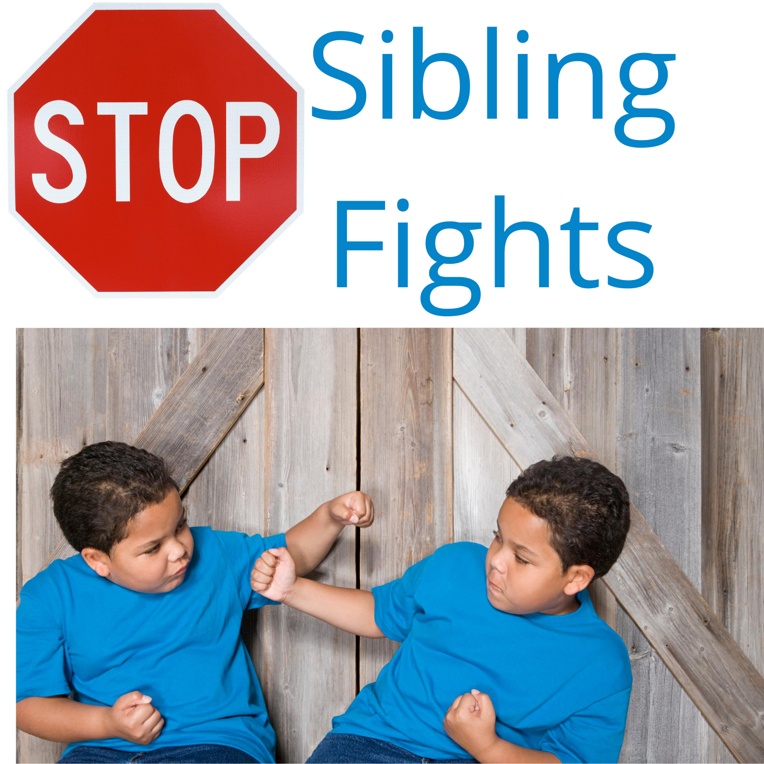 Stop Sibling Fights